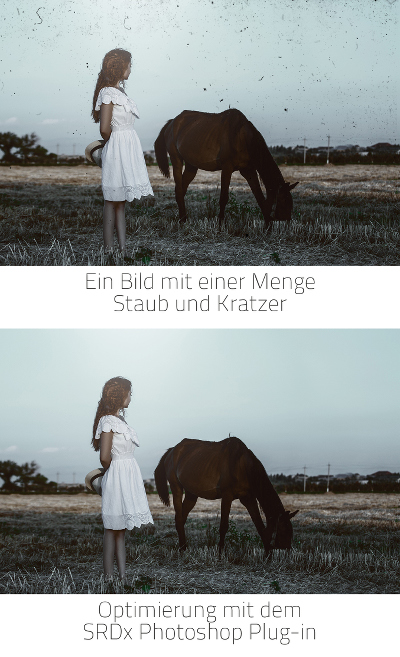 vorher_nachher_horse_hoch_de_small
