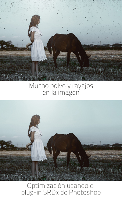 vorher_nachher_horse_hoch_es_small