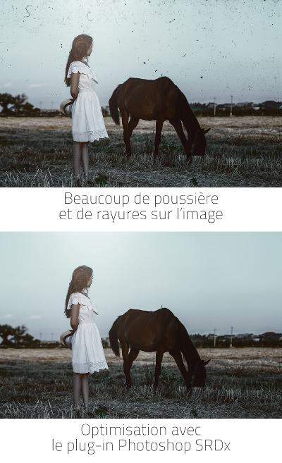 vorher_nachher_horse_hoch_fr_small
