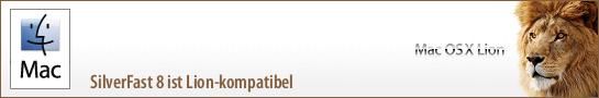 banner_lion_de