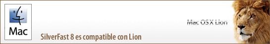 banner_lion_es