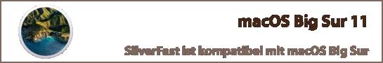 banner_macos_big_sur_de