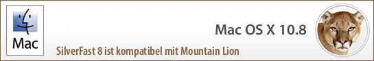banner_mountain_lion_de