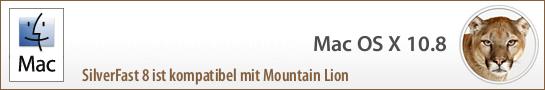 banner_mountain_lion_de