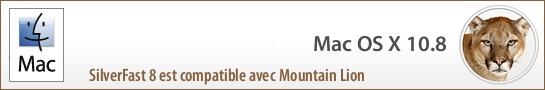 banner_mountain_lion_fr