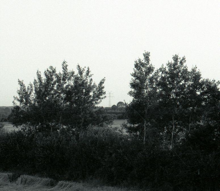 Unbearbeitetes Schwarz&Weiß Bild