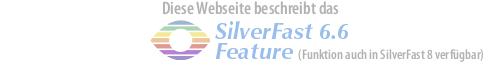 logo_sf6.6_de