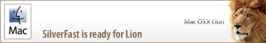 banner_lion_en