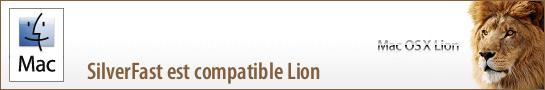 banner_lion_fr
