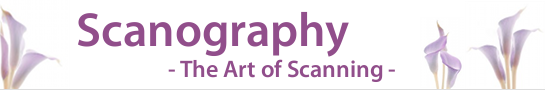 scanography_banner_545x90_en